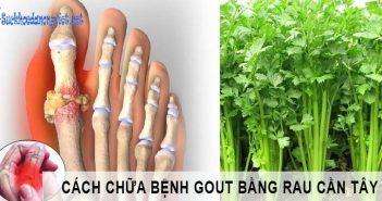 Cách chữa bệnh gout bằng rau cần tây