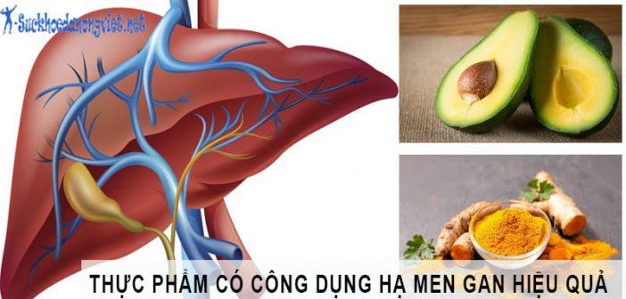 Các thực phẩm giúp hạ men gan hiệu quả