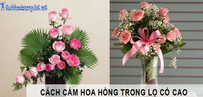 Hướng dẫn cắm hoa hồng trong bình cao cổ
