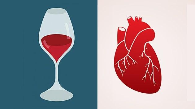 Uống nhiều rượu sẽ gây ảnh hưởng đến tim mạch