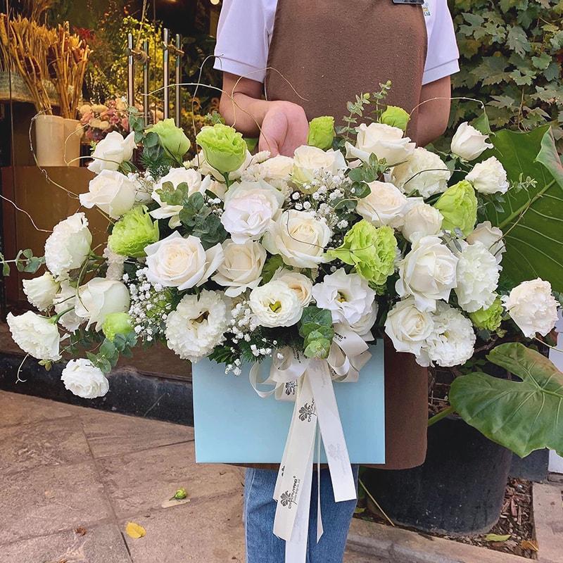 Hoa cát tường là loại hoa rất ý nghĩa chúc mừng ngày doanh nhân