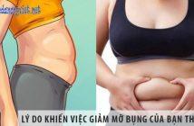 Lý do khiến việc giảm mỡ bụng của bạn luôn thất bại